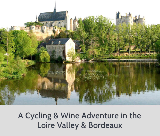 Cycling and Wine Tour